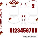 Torino 1994/95 (borta)