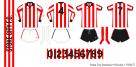 Stoke City 1976/77