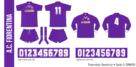 Fiorentina 1990/91