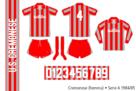 Cremonese 1984/85